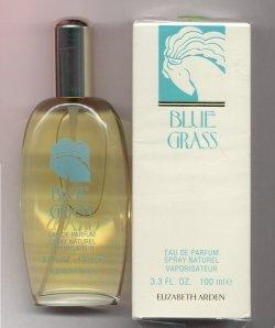 Blue Grass Eau de Parfum Spray 100ml/Elizabeth Arden